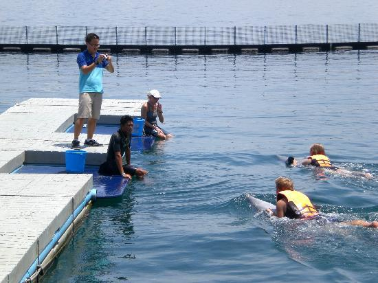 Ocean Adventure: the floating dock