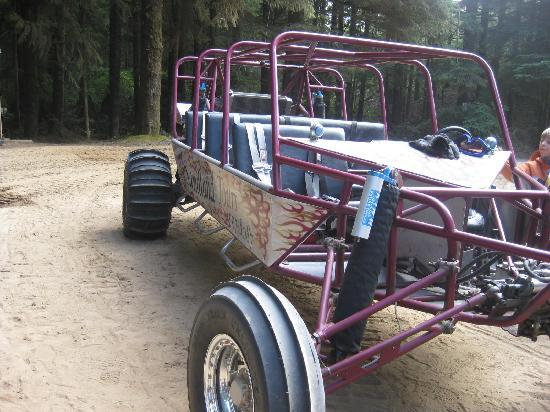 Sandland Adventures: This is the Dune Buggy we rode on!