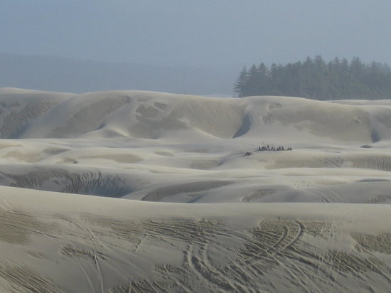 Sandland Adventures : Some of the Dunes!