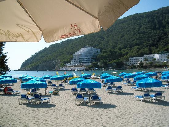Globales Montemar Apartments: the beach cala llonga