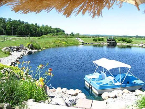 The Bella Ella Bed & Breakfast: Recreational Pond w/ paddleboating available for out guests