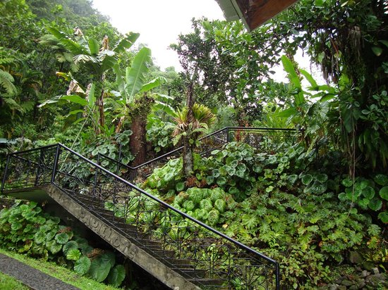 Roseau, Dominica: entrance to Papillote Tropical Gardens