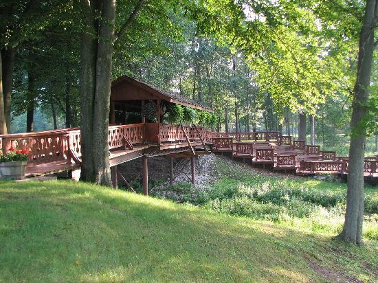 The Shack Bed and Breakfast: Bridge over the spring