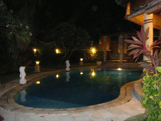 Emerald Villas: villa and pool at night
