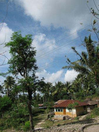 Asya: Kupang, Indonesia