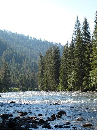 Buck's T-4 Lodge: Gallatin River--full of trout