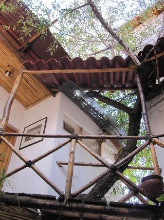 Casa de Mama Cusco-The Treehouse: The walkway