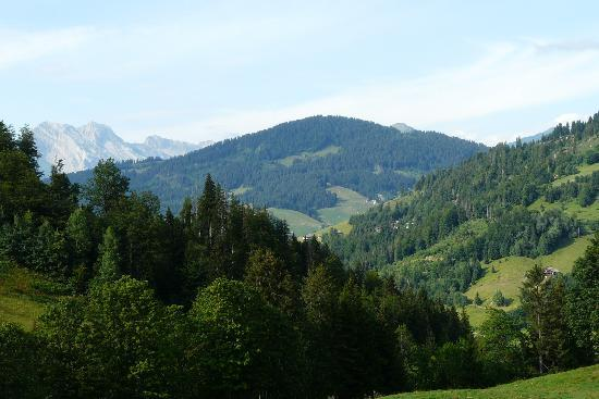 Hotel Chalet Alpage: view from the room's terrace