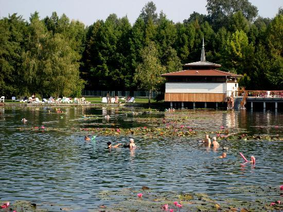 Thermal Lake of Hévíz: Der Thermalsee von Heviz