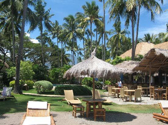 Pura Vida Beach & Dive Resort: The resort