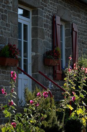 L'Angeviniere - Gites et Chambres d'Hôtes: Tout y est coloré en été...