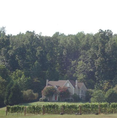 Charlottesville, VA: One of the many wineries
