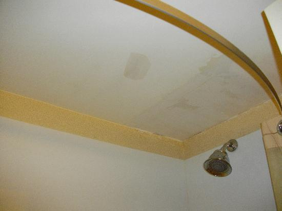 Clarion Inn: Plaster patch in bathroom ceiling.