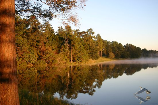Florien, LA: Sunrise on the lake at Hodges Gardens