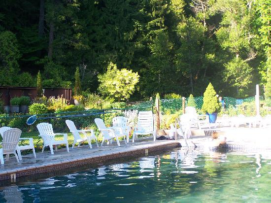 Belknap Hot Springs Lodge and Gardens: the riverside pool