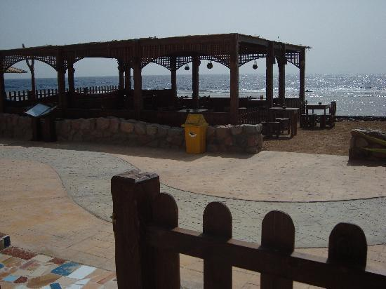 Ghazala Hotel: the beach right infront of the hotel