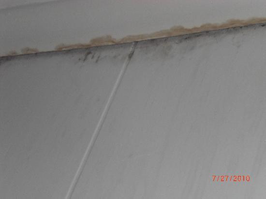 Beachcomber: Mold & mildew on wall/ceiling in same bedroom