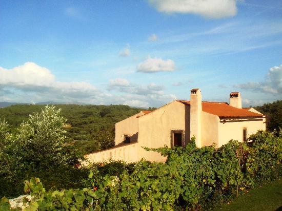 Villa Pedra Natural Houses : Alecrim House