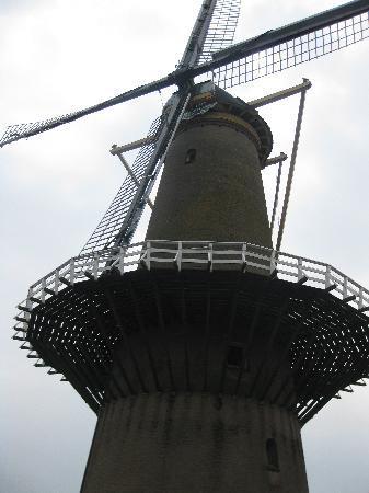 Delfshaven: Windmill