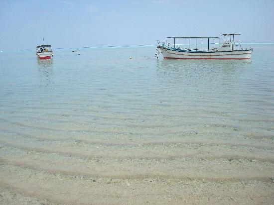 Yurigahama Beach Offshore Cruise Boat: 何艘も浜辺に待機しています