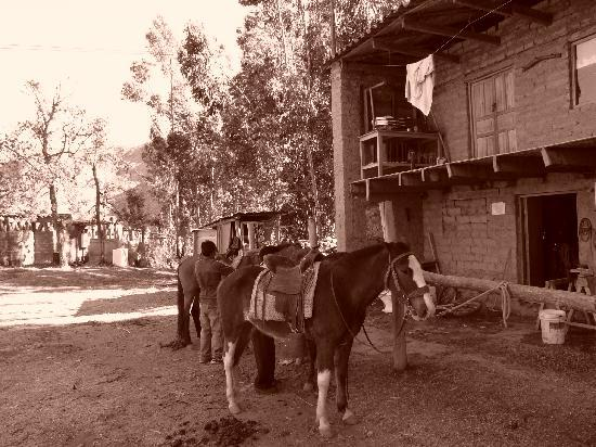 Cusco for You Salineras Ranch: The ranch