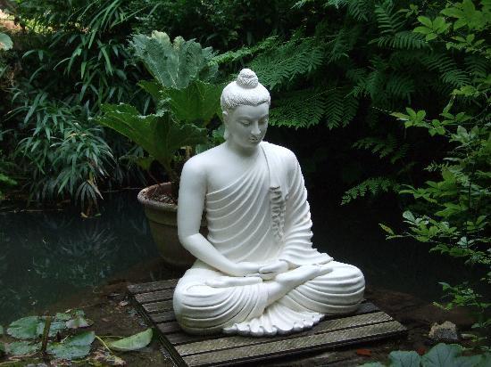 Beau Heller Garden: Buddha Statue
