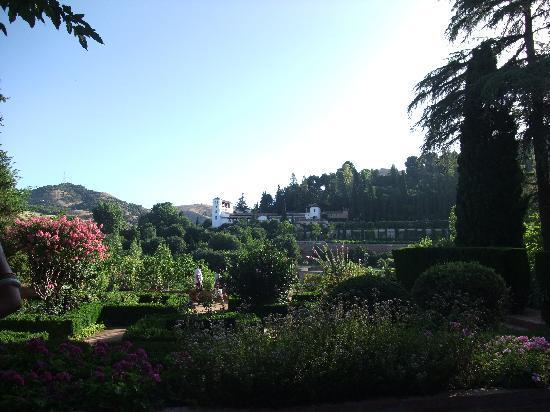 Generalife : パラドールのレストランから見えるヘネラリフェ。