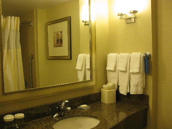 Hilton Garden Inn Richmond Airport: spacious bathroom