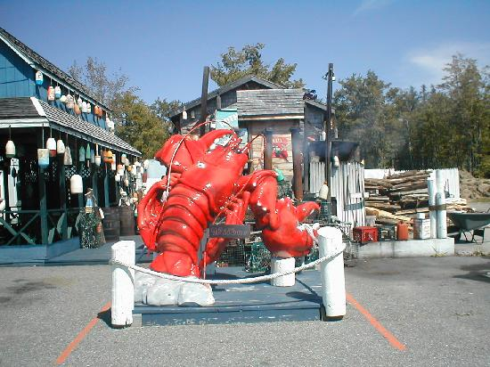 """Ruth and Wimpys Kitchen: """"Wilber the lobster"""""""