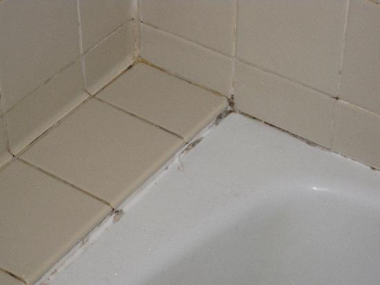Washington Court Hotel on Capitol Hill: Black mold in the bathtub