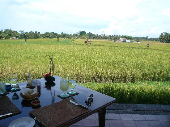 The Legian Bali: Lunch at the Chedi Club