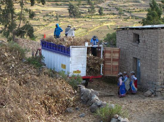 Hotel Kunturwassi Colca: View of Local Harvest from Hotel
