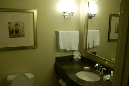 Hilton Garden Inn Charlotte/Ayrsley: Bathroom