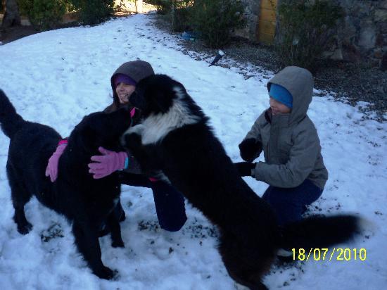 Antuquelen Hosteria Patagonica: Crianças e cachorros