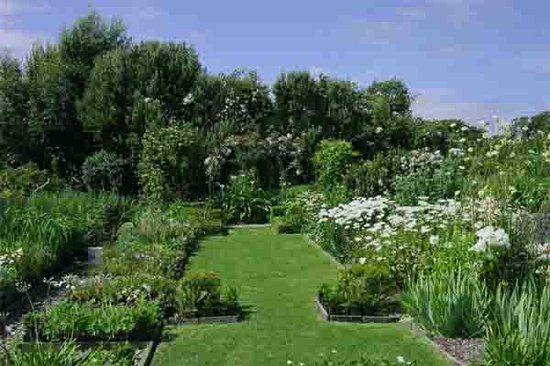Doolin Garden and Nursery: View of the garden
