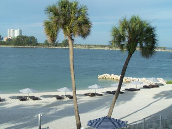 Wyndham Garden Clearwater Beach: Beautiful Gulf Views