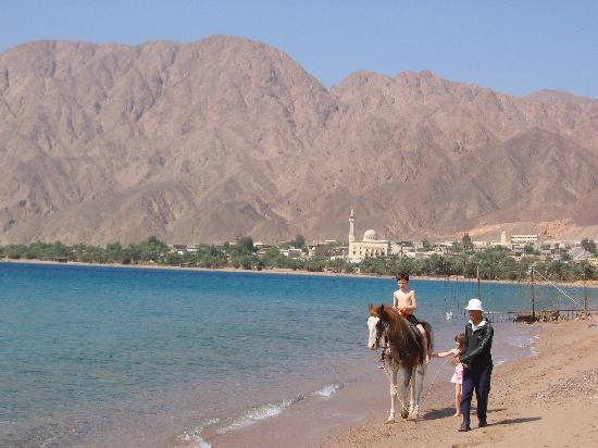 Sayadeen Village Nuweiba: First morning