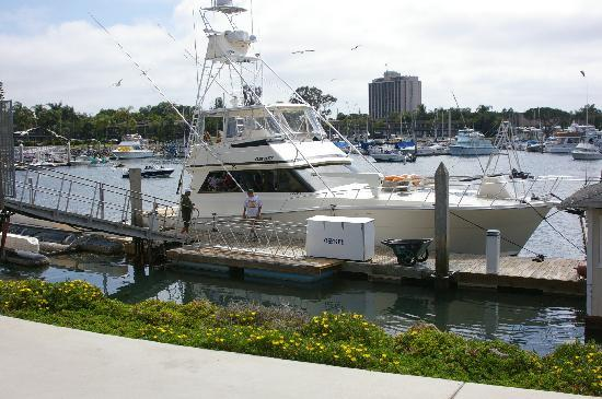 Osprey Private Charters: You got to love the boat!