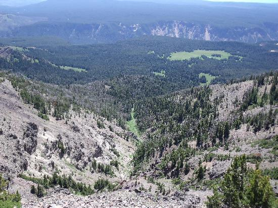 Mount Washburn: Canyon in the background