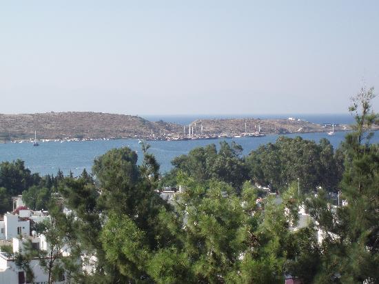 Hotel Jarra : Bodrum Gümbet Marina