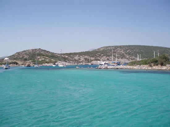 Hotel Jarra : Aquarium Bay
