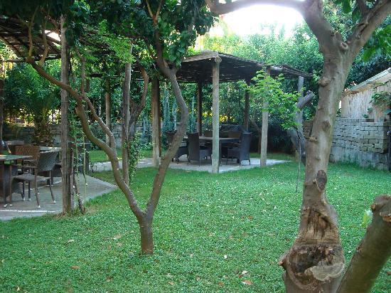 Artis Domus Relais: garden