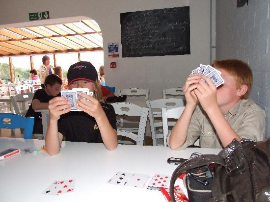 YHA Broad Haven: Cards in the dining room