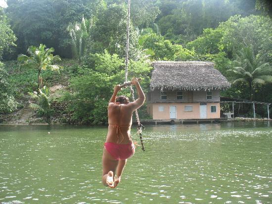 Hotel Finca Tatin : Tarzan