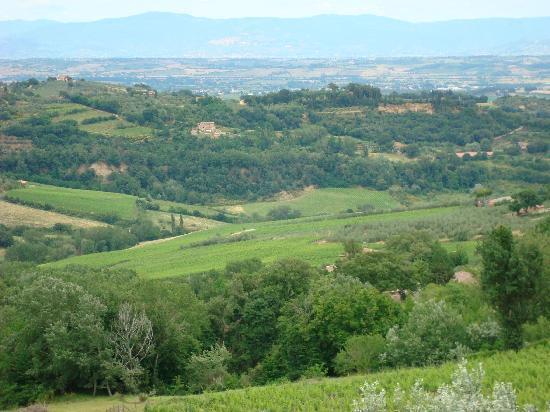 Villa Sant'Andrea: View from entrance