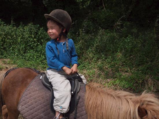 Jas de mery : pony ride in Petuis 2