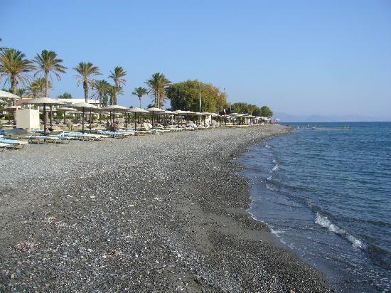 Grecotel Kos Imperial Hotel : Hotel beach