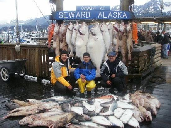 Profish n sea charters seward all you need to know for Fishing charters seward ak
