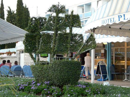 Hotel Plavi: Plavi entrance