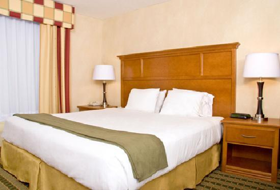 Holiday Inn Express & Suites Ann Arbor: Room